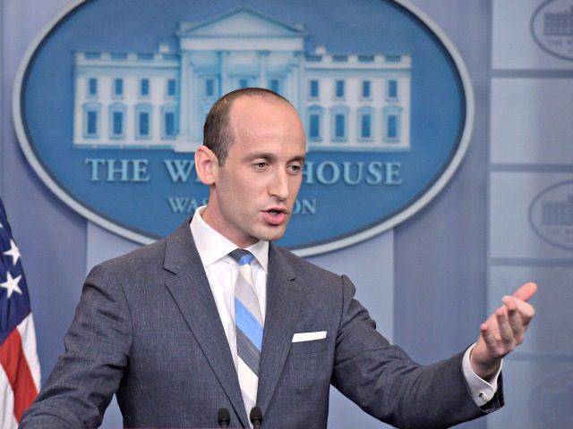 Stephen Miller Net Worth