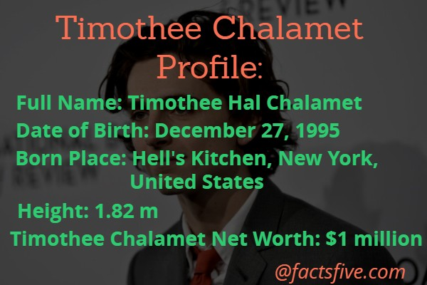 Timothee Chalamet Net Worth