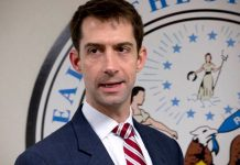 Tom Cotton Net Worth