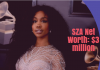 SZA Net Worth