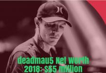 deadmau5 Net Worth