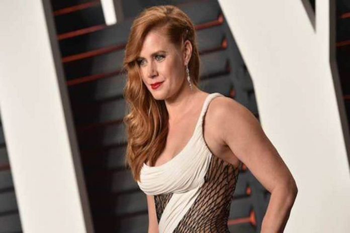Amy Adams Wiki, Bio, Age, Net Worth, and Other Facts
