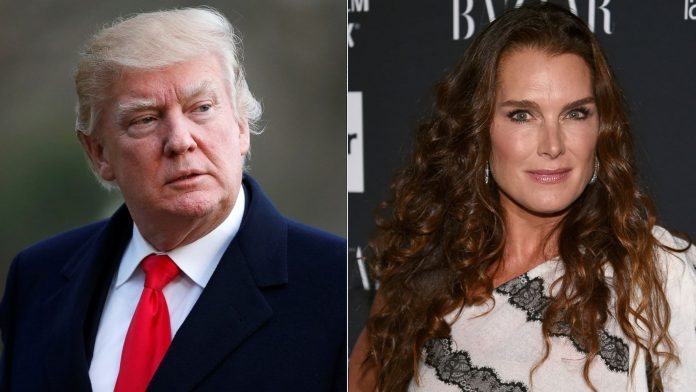 Brooke Shields Wiki, Bio, Age, Net Worth, and Other Facts