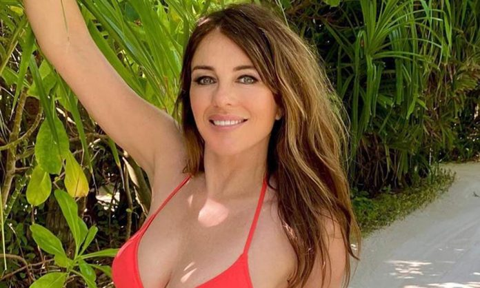 Elizabeth Hurley Wiki, Bio, Age, Net Worth, and Other Facts