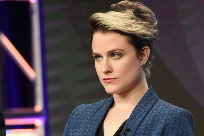 Evan Rachel Wood Wiki, Bio, Age, Net Worth, and Other Facts