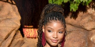 Halle Bailey Wiki, Bio, Age, Net Worth, and Other Facts