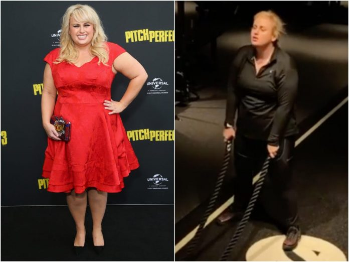 Rebel Wilson Wiki, Bio, Age, Net Worth, and Other Facts