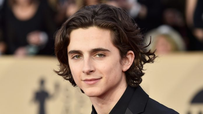 Timothée Chalamet Wiki, Bio, Age, Net Worth, and Other Facts