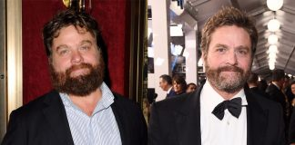 Zach Galifianakis Wiki, Bio, Age, Net Worth, and Other Facts