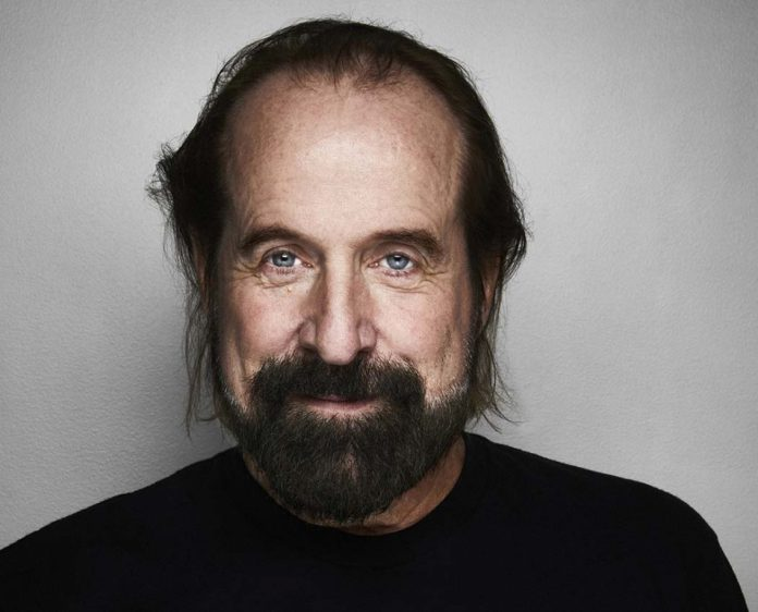 Peter Stormare Wiki, Bio, Age, Net Worth, and Other Facts
