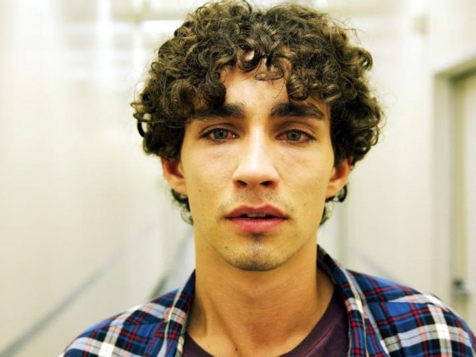 Robert Sheehan Wiki, Bio, Age, Net Worth, and Other Facts